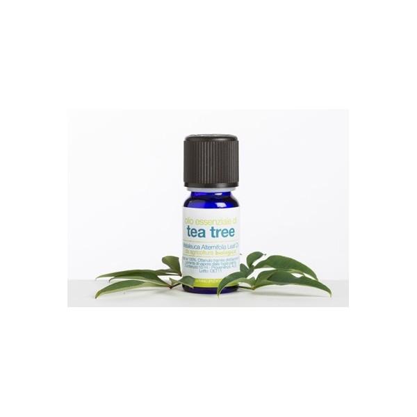 Olio essenziale di tea tree BIO- La Saponaria