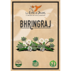 BHRINGRAJ - Le erbe di Janas